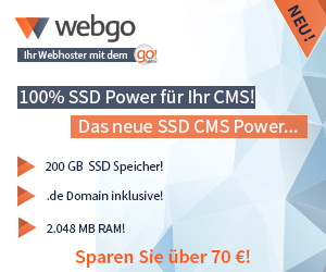 SSD CMS Hosting Power - 300x250